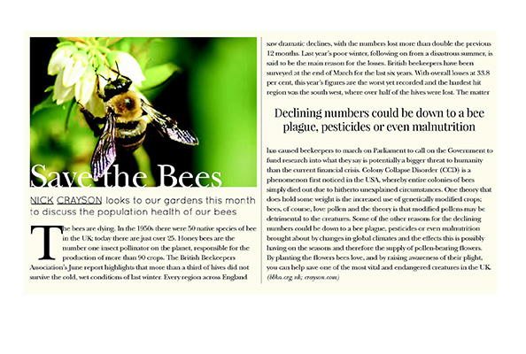 Kensington-&-Chelsea-Mag,-Aug-'13,-Save-the-Bees